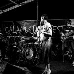 Calamus-Hit-Booker1.jpg